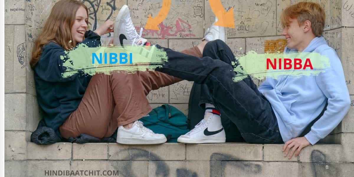Nibba Nibbi Ka Matlab